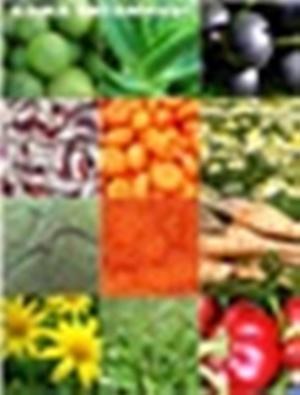 витамины для кожи текст